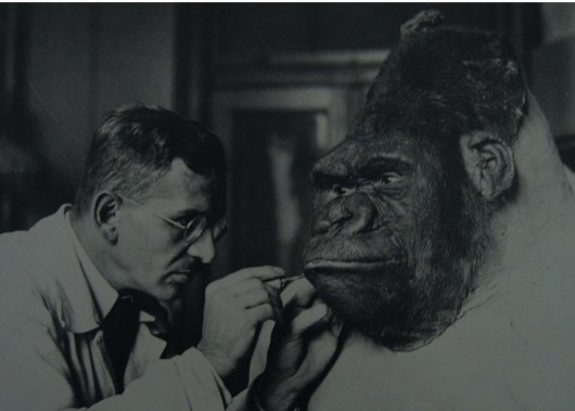 Karl Kaestner is turning Bobby into a Dermoplastik, 1935, photo archives Museum für Naturkunde, Berlin